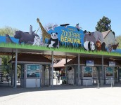 Week-end au Zoo de BEAUVAL du 4 au 5 avril 2020 - Départ de CHALON, MACON et NEVERS